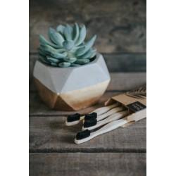 Brosses à dents Bambou Medium - Wild&Stone WILD&STONE - 3